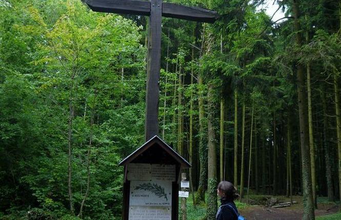 TRANCHEES DE BOIS BRULE ET CROIX DES REDOUTES 3 - Apremont-la-Forêt